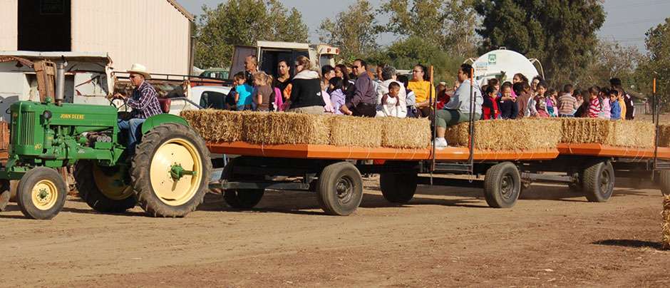 roemer pumpkin patch school trips hay ride
